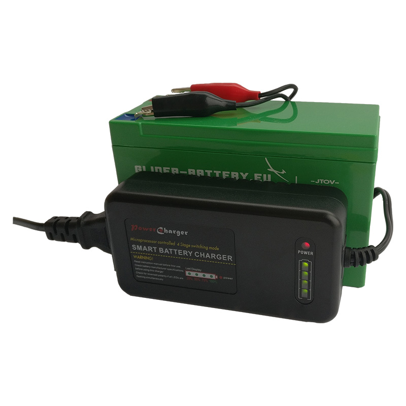 lifepo4 battery and charger smart